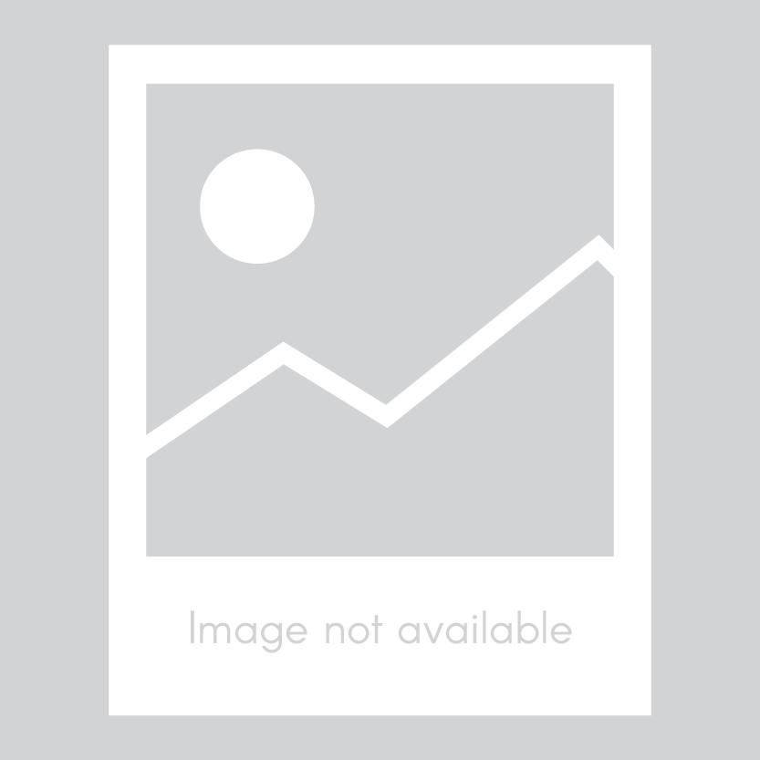 PULSATION DAMPENERS Image